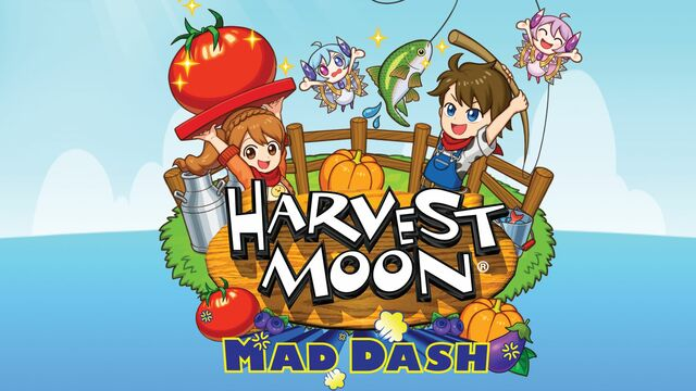 Harvest Moon Mad Dash Principal
