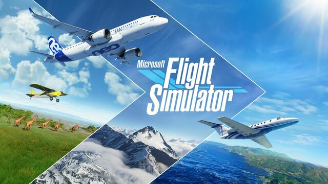 Microsoft Flight Simulator Principal